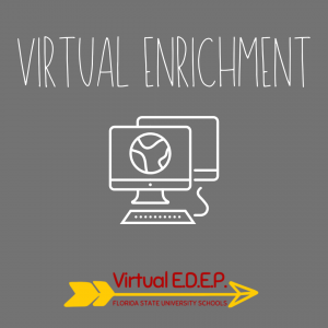 Virtual Enrichment by FSUS EDEP