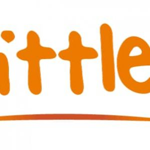 Little Bits Gym Summer Camps