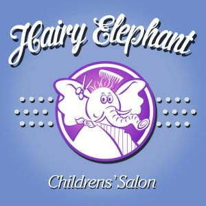 Hairy Elephant Salon Parties