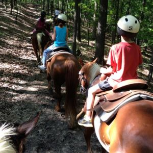 Rocking J Ranch Horseback Riding Parties