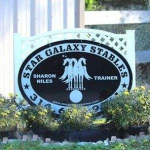 Star Galaxy Stables Horseback Riding Lessons