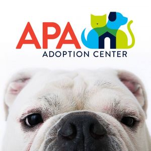 APA Adoption Center Story Time