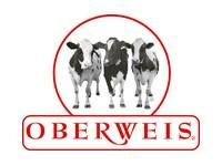 Oberweis Ice Cream
