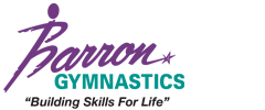 Barron Gymnastics Summer Camps