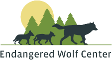 Endangered Wolf Center Summer Camp