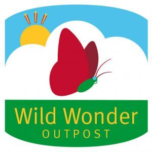Wild Wonder Outpost Discovery Room