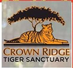 Crown Ridge Tiger Sanctuary